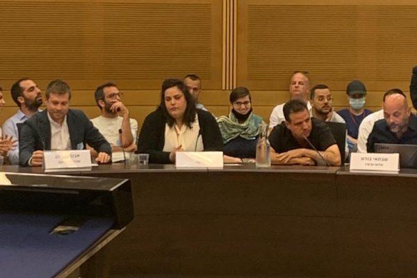 Gisha's public advocacy coordinator, Noa Galili at the Knesset.