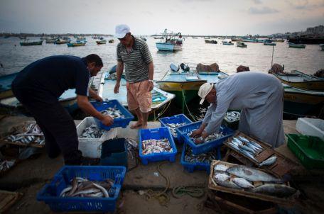 Fishermen in Gaza port. Photo by Eman Mohammed