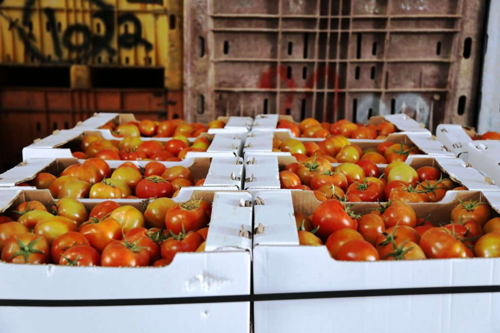 A shipment of Gaza-grown tomatoes on its way to Israel in March 2015. Photo by Gisha